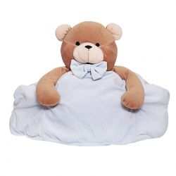 Brown Teddy Bear with Blue Case