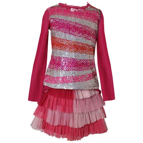 Red-Pink Long-Sleeved Top and a Tulle Netting Skirt